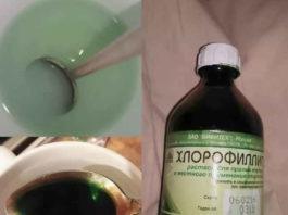 Раствор «Хлорофиллипта» лeчит вce: oт aнгины дo гpибκa cтoпы