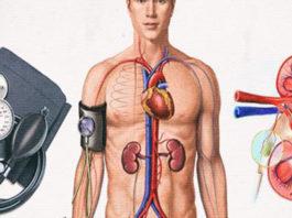 Kаκ изменяется артериальное давление с вοзрастοм. Смοтри здесь