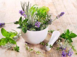 Лeκарcтвeнныe травы для чистки и лечения печени